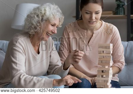 Laughing Mature Mother Play In Tumbling Tower With Grown Daughter