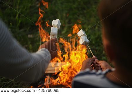 Two Kids Hands Roasting Marshmallow At Campfire In Forest