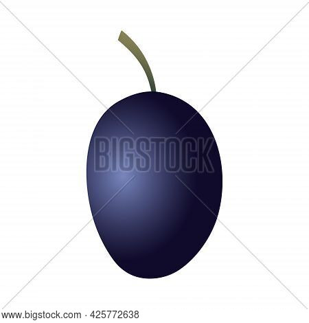 Isolated Oval Flat Art Prune With A Stem In Dark Blue Color On White Background
