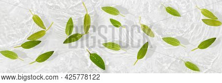 Green Leaves On Blue Water Background Close-up. White Texture Surface With Rings And Ripple. Flat La