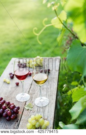White And Red Wine Glasses And Grape On The Wooden Table In The Vineyards, Winery With Green Grass B