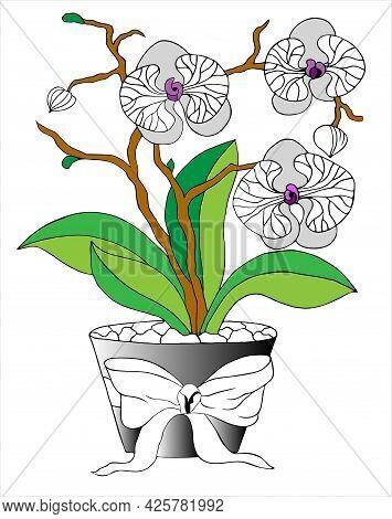 Orchid With Flowers In A Pot. Flower Coloring Book Anti-stress. Vector Illustration  Black And White