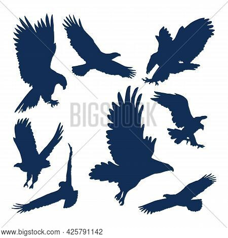 Flying Eagles. Silhouettes Of Birds Wild Hawks Freedom Animals For Motorcycle Emblems Recent Vector