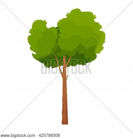 Forest Comic Tree, Detailed And Textured In Cartoon Style Isolated On White Background. Tall And Bid