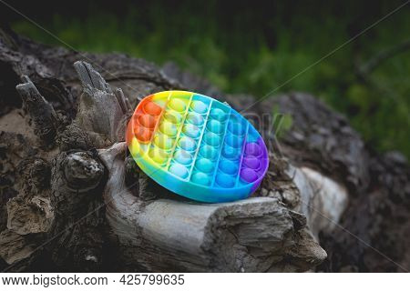 A Round Antistress Toy Lies Outside On An Old Dry Tree Stump.