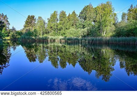 Trees Mirroring In Calm Water In Sweden