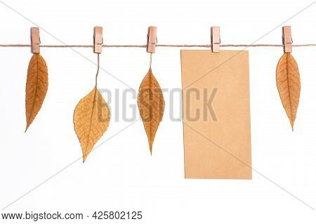 Autumn Fallen Leaves Hanging On A Rope On Clothespins, Craft Envelope And Blank White Sheet For Text