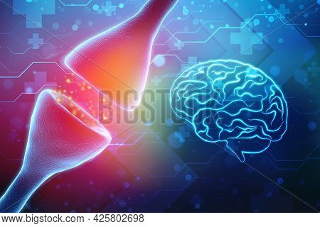 Synapse And Neurons In The Human Brain. Sending Chemical And Electrical Signals, Human Nervous Syste