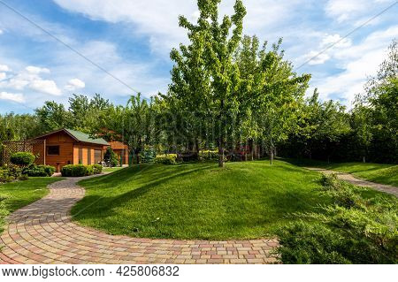 Scenic View Yard Garden Trees And Paved Stone Path Road For Walk Against Beautiful Blue Sky. Landsca