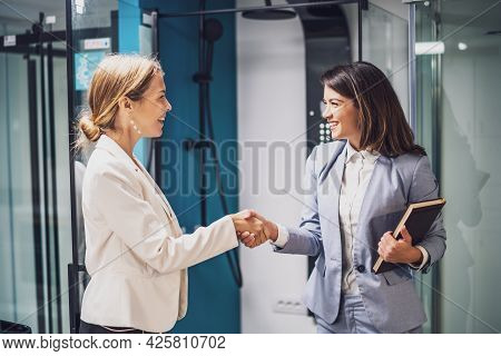 Businesswoman Owning Small Business Bath Store. She Is Handshaking With Satisfied Customer.