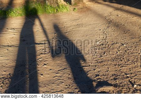 Mom Leads Baby By The Hand, Shadows On The Road.