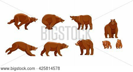 Bear In Different Poses. Flat Vector Style Set Of Large Bears On White Background. Wild Forest Creat