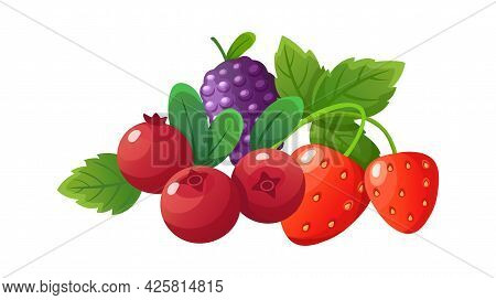 Cartoon Berries. Fresh Berry, Isolated Strawberry Cranberry Blackberry. Seasonal Fresh Vitamin Desse