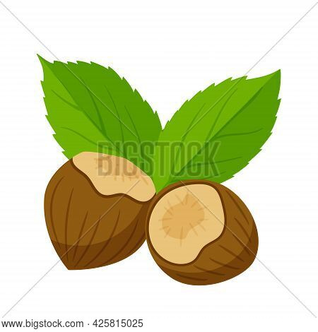 Hazelnuts In A Shell With Leaves. Healthy Food, An Ingredient. Flat, Cartoon Style. Color Vector Ill