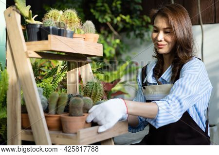 Asian Woman Housewife In Apron Sitting And Arranging Pots Of Cactus As Hobby In House Graden.