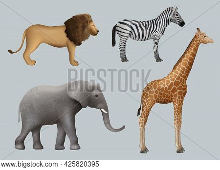 Wild African Animals. Lion Elephant Zebra Giraffe Safari Travelling Outdoor Collection Decent Vector