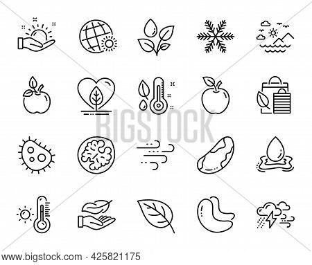 Vector Set Of Bad Weather, Sea Mountains And Lightweight Line Icons Set. Walnut, Leaf And Cashew Nut