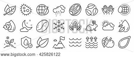 Set Of Nature Icons, Such As Sunny Weather, Fair Trade, Rainy Weather Icons. Bacteria, Mint Leaves,
