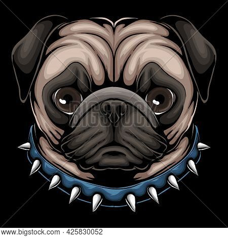 Pug Dog Head A Wearing Collar Vector Illustration For Your Company Or Brand