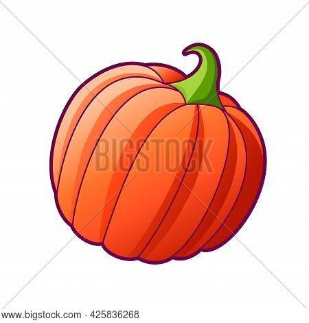 Drawn Big Ripe Pumpkin. Vector Icon, Illustration Isolated On White Backgorund