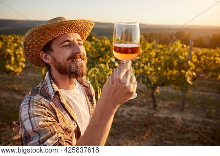 Happy Adult Bearded Male Winemaker In Checkered Shirt And Straw Hat Examining Wine In Glass While St