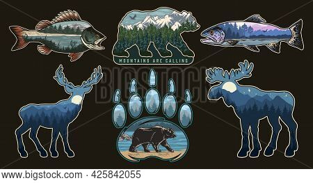 National Park Vintage Colorful Prints With Different Nature Landscapes Inside Perch Rainbow Trout Fi