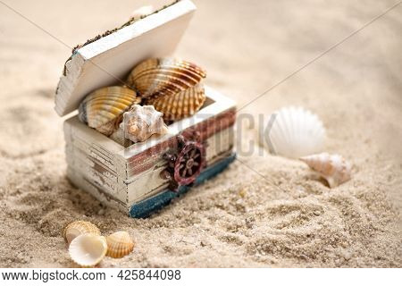 Chest Filled With Sea Shells On Sandy Beach