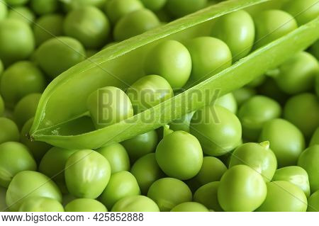 Green Peas. Space For Copying The Top View Of The Green Peas. Vegetable Harvesting.beautiful Close-u