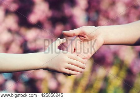 Mother And Child Hands On Nature Background. Family Support, Help And Trust. Parent Holds The Hand O