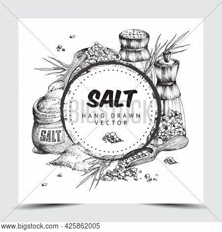Sea Salt Frame Or Label Hand Drawn Engraved Vector Illustration Isolated.