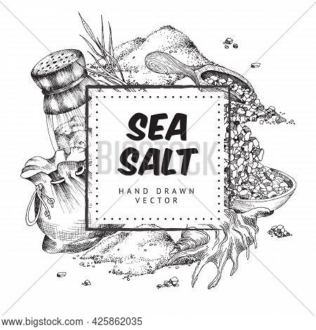 Frame For Text At Backdrop With Sea Salt Engraving Vector Illustration Isolated.