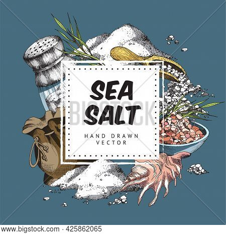 Organic Sea Salt Background Hand Drawn Colored Vector Illustration Isolated.