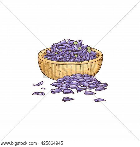Mortar With Lavender Flowers, Hand Drawn Engraving Vector Illustration Isolated.