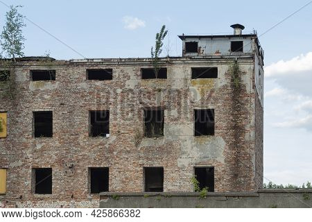 An Old Abandoned Red Brick Building With No Windows. Abandoned Brick, A Young Tree Will Sprout From