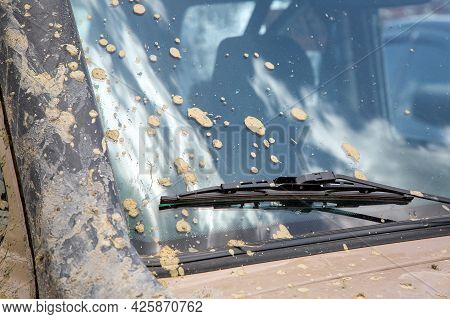 Dirty Car With Unwashed Windshield In Spots Of Dry Mud, Front Part Of The Vehicle Front View Close U