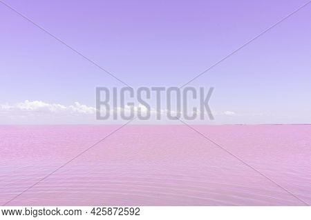 Salt Lake With Pink Salt And The Soft Violet Sky. Sasyk-sivash Pink Salt Lake In Crimea. Summer Land