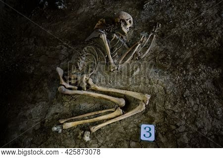 Old Human Skeleton In Ancient Tomb At Archaeological Excavation