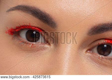Macro Shot Of Beautiful Eyes Of The Girl With Beautiful Eyebrows And Long Eyelashes. One Eyebrow Is