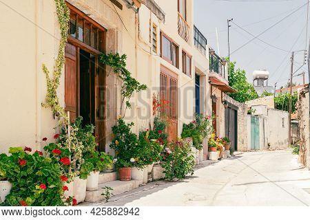 Sunny Narrow Street In Old Village Omodos On Cyprus. Stone Walls And Vibrant Green Plants On A Sunny