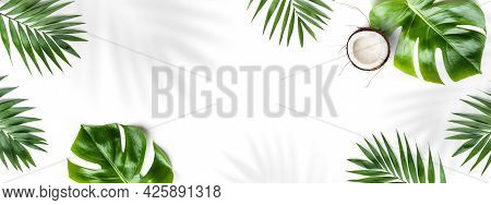 Tropical Leaves, Monstera Plants And Coconut Isolated On White Background. Summer Concept, Leaf Shad