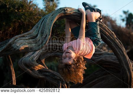 Child Climbing Tree. Cute Kid Climbing The Tree In The Park, Happy Childhood Concept.