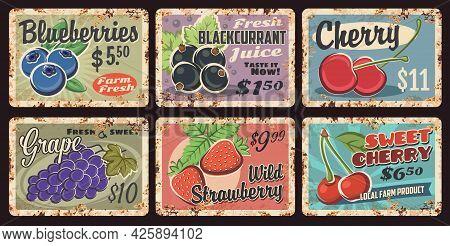 Farm Fresh Berry Rusty Metal Plates. Blueberries, Blackcurrant And Sweet Cherry, Grapes, Wild Strawb