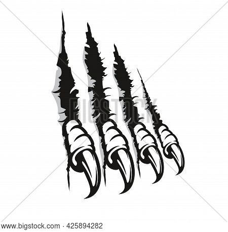 Bird Of Prey Claw Marks, Scratches, Vector Monster Fingers With Long Nails Tear Through Paper Or Wal