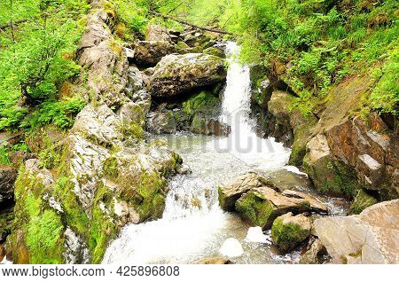 A Small Waterfall Flowing Down In A Stormy Stream Through A Summer Forest After A Rain.