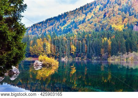 Lake Fuzine in Northern Italy. Magnificent colors of autumn. Orange and yellow trees are reflected in the green smooth water. The mountains are covered with autumn forests.