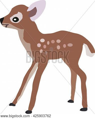 A Small Fawn With Dots On Its Side, Artiodactyl Mammals, Vector Drawing, Isolate On A White Backgrou