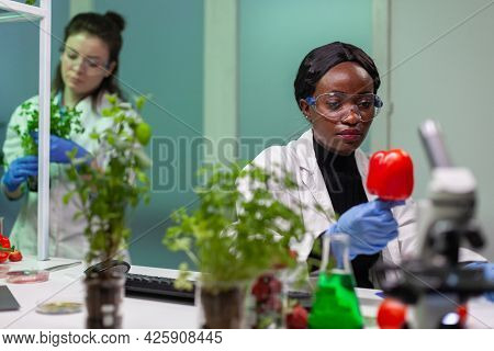 Chemist Holding Analyzing Pepper With Pesticides Writing Pharmaceutical Medical Expertise On Notepad
