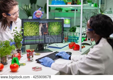 Medical Team Discussing About Petri Dish With Vegan Meat Analyzing Gmo. Chemists Scientist Researchi