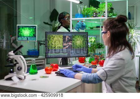 Scientist Woman Researcher Typing Biochemistry Expertise On Computer For Microbiology Experiment. Me