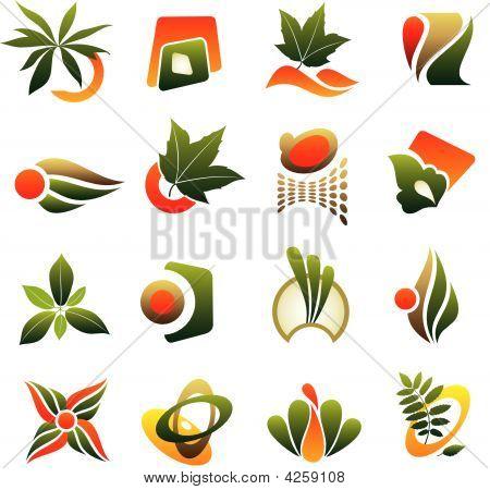Vector Set Of Design Logo Elements With Leaf